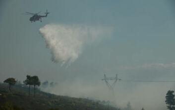 Συναγερμός στην Πυροσβεστική: Δύο μεγάλες φωτιές σε Νέα Μάκρη και Κερατέα