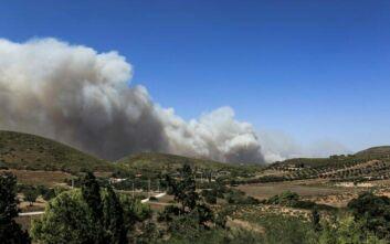 Δήμαρχος Σαρωνικού για την φωτιά στην Κερατέα: Έχουν καεί σπίτια
