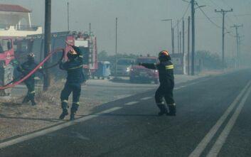 Μεγάλη φωτιά στην Ανάβυσσο: Αποκαταστάθηκε η κυκλοφορία σε σημεία των λεωφόρων Αθηνών - Σουνίου και Καραμανλή
