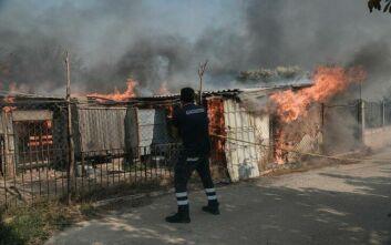 Κόλαση φωτιάς σε Ανάβυσσο και Κερατέα - Ανησυχία για τις αναζωπυρώσεις