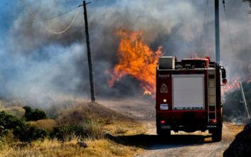 Ενισχύονται οι πυροσβεστικές δυνάμεις στη φωτιά στην Κορινθία – Η πυρκαγιά καίει δασική έκταση