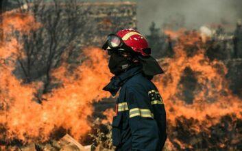 Μάχη με τους ανέμους και τον χρόνο για τη μεγάλη πυρκαγιά στον Έβρο
