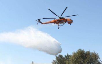 Σε ύφεση η μεγάλη πυρκαγιά στην Αρτέμιδα