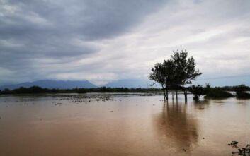 Κλιμάκιο του ΚΙΝΑΛ στις πληγείσες περιοχές σε Φθιώτιδα και Καρδίτσα