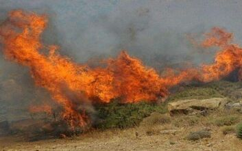 Μεγάλη πυρκαγιά στον Άγιο Νικόλαο της Κρήτης - Ισχυρές πυροσβεστικές δυνάμεις