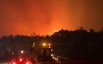 Έβρος: Μαίνεται η φωτιά στην Αλεξανδρούπολη - 11 πυρκαγιές μέσα σε 10 ημέρες στον νομό