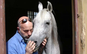 Ο Έλληνας κτηνίατρος που φροντίζει τα άλογα του Σουλτάνου του Ομάν
