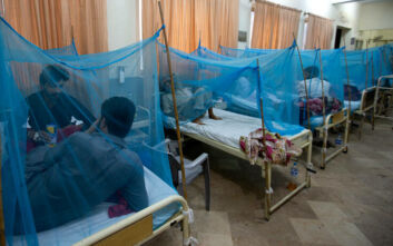 Πώς ο δάγκειος πυρετός μπορεί να προστατεύει από τον κορονοϊό