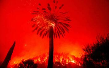 Glass Fire: Τρεις νεκροί από τη φωτιά στην κοιλάδα της Νάπα