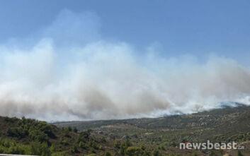 Οι πρώτες εικόνες από τη φωτιά στη Κερατέα: Τεράστια δύναμη της Πυροσβεστικής