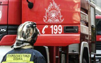 Φωτιά τώρα στην περιοχή Σέκουλας στην Ηλεία