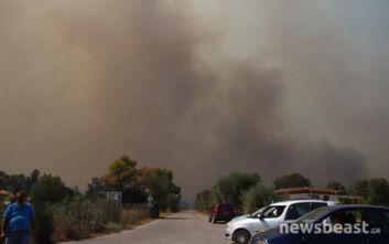 Μεγάλη φωτιά στην Κερατέα: Εκκενώθηκαν οικισμοί - Σύσταση να φύγουν οι κάτοικοι της Αναβύσσου από τα σπίτια τους