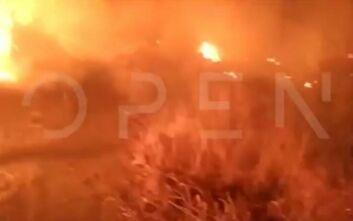 Βίντεο ντοκουμέντο από τη φωτιά στη Μόρια