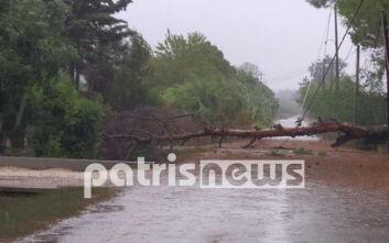 Κακοκαιρία Ιανός: Μικρής έκτασης ζημιές σε Κατάκολο, Ανδραβίδα και Λεχαινά