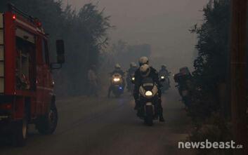 Ερευνάται το ενδεχόμενο εμπρησμού για τη μεγάλη φωτιά στην Ανάβυσσο