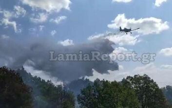 Εικόνες από τη φωτιά στον Γοργοπόταμο
