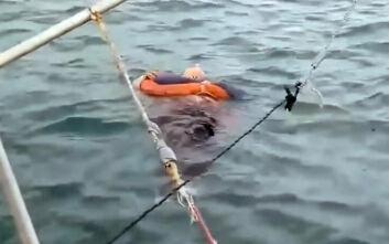 Μυστήριο με γυναίκα που αγνοούνταν για δύο χρόνια και την βρήκαν στη θάλασσα ζωντανή