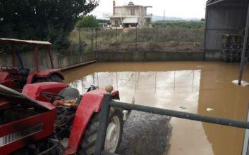 Αγρίνιο: Έσπασε ρέμα στη Στράτο – Μεγάλες ζημιές σε επιχειρήσεις