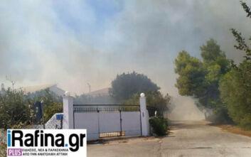 Οι πρώτες εικόνες από τη μεγάλη φωτιά στην Αρτέμιδα: Απομακρύνθηκαν κάτοικοι - Κυκλοφοριακές ρυθμίσεις