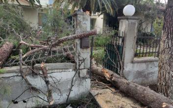 Εικόνες καταστροφής από ανεμοστρόβιλο και σφοδρή κακοκαιρία στη Λέσβο