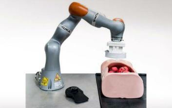 Ευρωπαίοι ερευνητές ανέπτυξαν ημιαυτόματο ρομποτικό σύστημα για ενδοσκοπήσεις