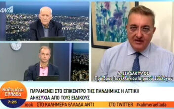 Εξαδάκτυλος: Περίπου 40 με 50 εισαγωγές για κορονοϊό στα νοσοκομεία της Αθήνας καθημερινά