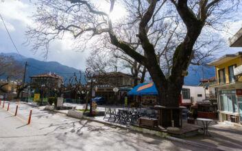 Το χωριό- ήρεμη δύναμη στους βόρειους πρόποδες του Παρνασσού