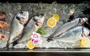 Ειδικό σήμα θα ενημερώνει τους καταναλωτές για τους ελέγχους και την προέλευση των αλιευμάτων