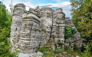 Το μοναδικό πέτρινο δάσος της Ελλάδας αποτελεί ένα σπάνιο γεωλογικό φαινόμενο