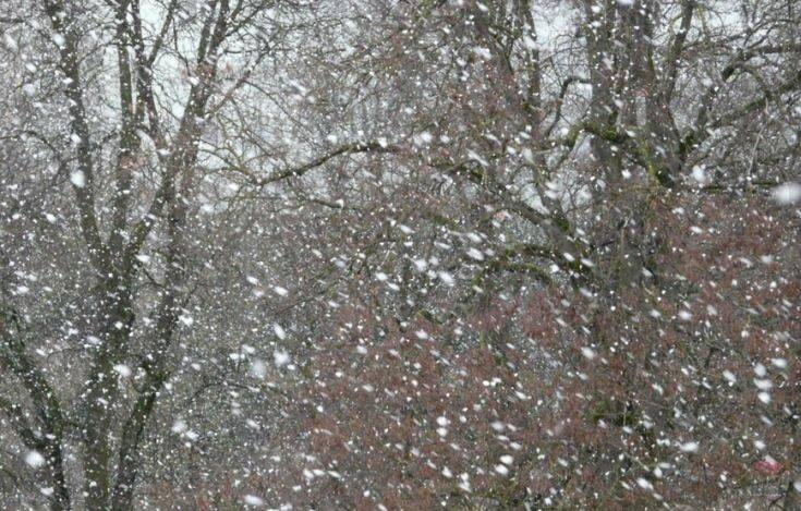 Μετεο-έκπληξη! Αντί για βροχή, ασθενείς χιονοπτώσεις – Newsbeast