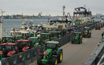 Οργή των εκτροφέων βιζόν στη Δανία - Βγήκαν τα τρακτέρ στους δρόμους της Κοπεγχάγης
