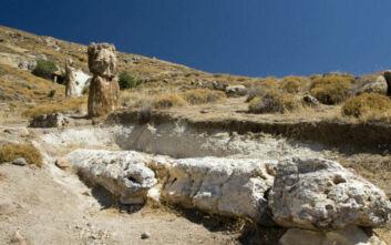 Ακόμη 14 απολιθωμένα δέντρα βρέθηκαν στη Λέσβο: Μαρτυρούν την έκρηξη ηφαιστείων πριν από 18 εκατ. χρόνια