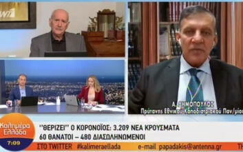 Δημόπουλος: Με τα τωρινά δεδομένα, το lockdown θα παραταθεί