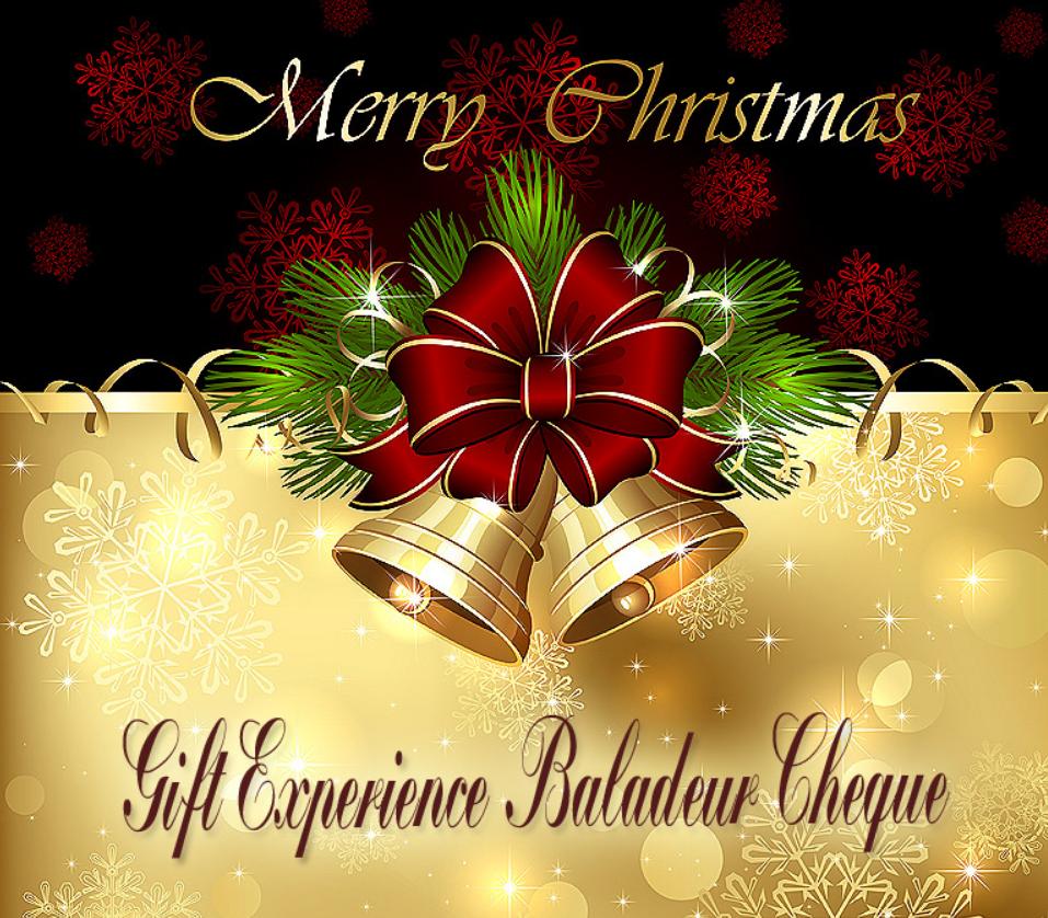 Screenshot 2020 12 03 Χριστουγεννιάτικη Δωροεπιταγή 20€ για Εμπειρίες Ζωής