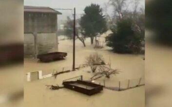 Εικόνες κατακλυσμού από την Ευκαρπία Σερρών - Σε απόγνωση οι κάτοικοι