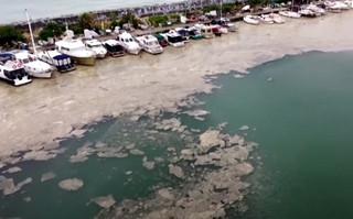 «Γλίτσα» απειλεί τη θάλασσα του Μαρμαρά – Προειδοποιούν οι ειδικοί