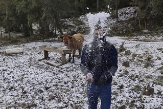 Τρελάθηκε ο καιρός στη Βραζιλία: Χιόνισε μετά από 64 χρόνια - Newsbeast
