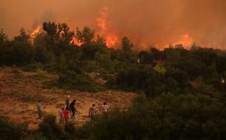 Φωτιά στα Βίλια: Μεγάλο το μέτωπο κοντά στον οικισμό – Μια ανάσα από τα σπίτια οι φλόγες